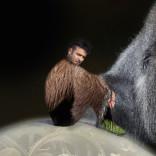 L'evoluzione della specie e quella del cantautore