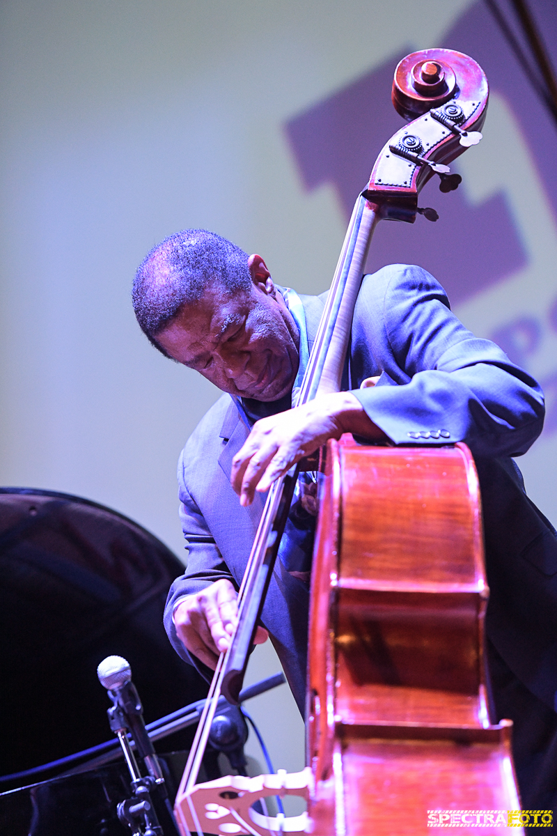 Buster Williams 4tet @ Napoli Jazz Winter 2016