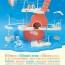 Parte la XXI edizione del Meeting del Mare