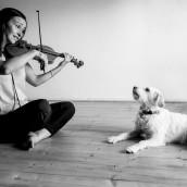 Il violino che gira attorno al mondo