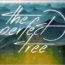 """War Machine"", il nuovo lyric video dei The Perfect Tree"